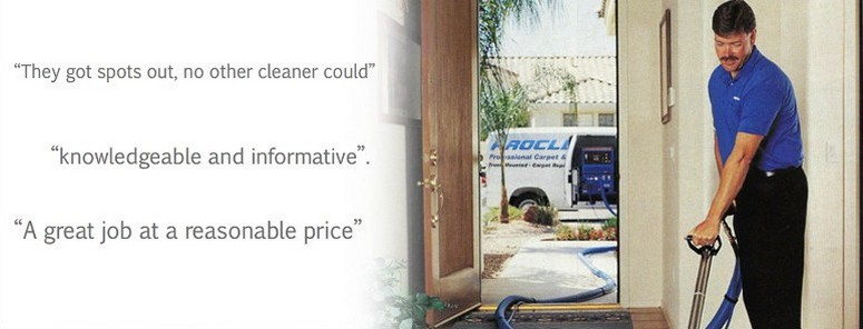 proffessional capet cleaning